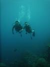Dive_2